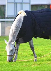 couverture-cheval-hippoclean-netoyage-compressor